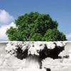 L'era Atomica Sta Per Finire. Il 7 Luglio 2017 All'ONU Si è Varato Un Trattato Per Proibire Gli Ordigni Nucleari